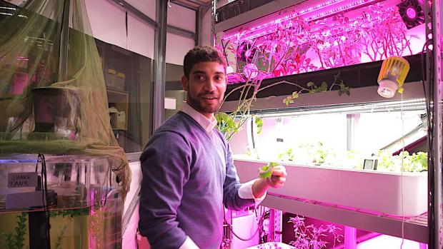 grad student holding greens grown in the lab