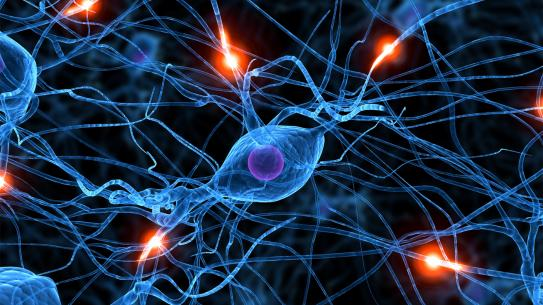 Chemical and Biomolecular Engineering Neurons