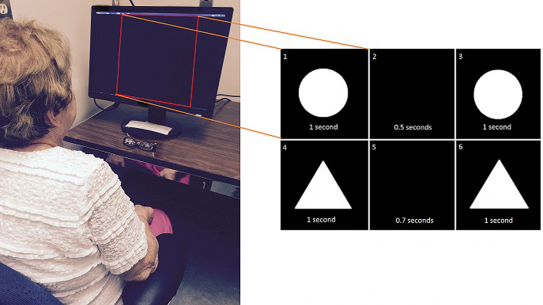 a patient staring at a computer screen with an inset showing shapes in a visual test