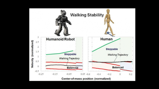 a graph that compares the Walking Stability of Robot and humans