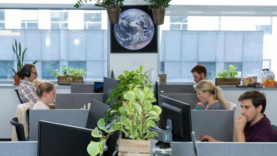 office with plants, earth poster and people working at cubicles