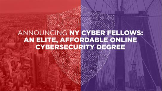 Cyber Fellows graphics