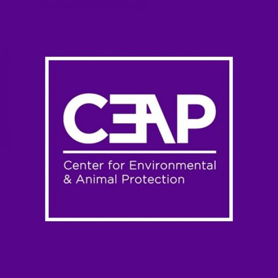 CEAP block lettering above Center for Environmental & Animal Protection on purple background
