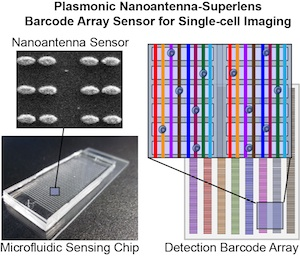 Plasmonic sensor for single cell sensing